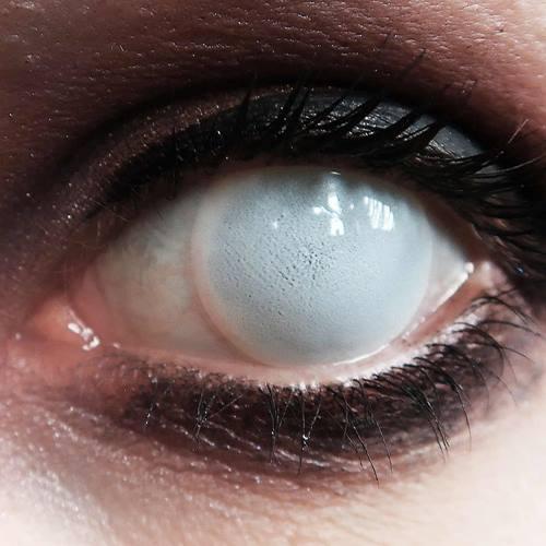 6758f3c8cb72fa Blind white- 1 dag fun lenzen - Halloween Carnaval Party - XtremeEyez - per  2