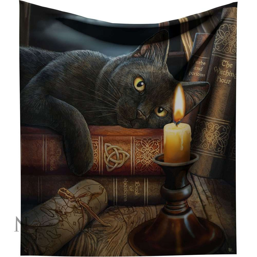 WITCHING HOUR BLACK CAT BY VOODOO CANDLE SMALL MIRROR JEWELRY BOX BY LISA PARKER